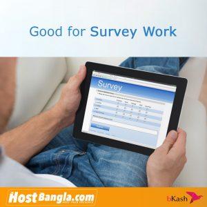 Survey Work